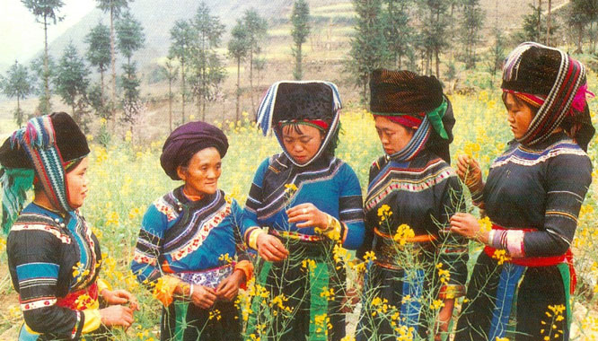 Co Lao People in Ha Giang