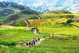 Volunteer for Ethnic Minority Youth in Sapa