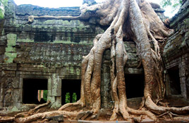 vietnam-and-cambodia-family-discovery-15days